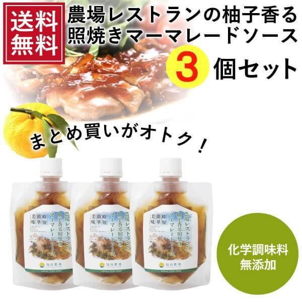 熊本発 簡単料理たれ ゆずマーマレード 照り焼き 調味料 150g 3袋 送料無料