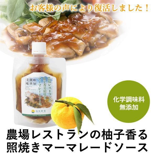 熊本発 簡単 料理たれ ゆず マーマレード 照り焼き 調味料 150g袋