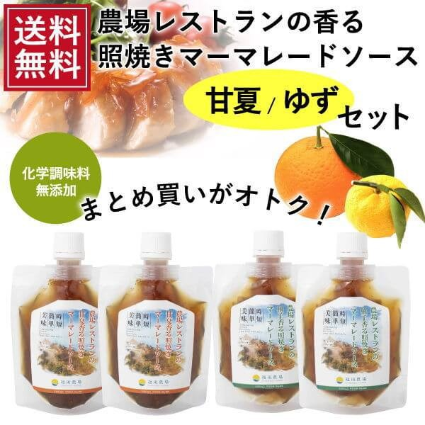 送料無料 熊本発 簡単料理たれ 甘夏ゆず マーマレード 照り焼き 調味料 150g4 袋セット