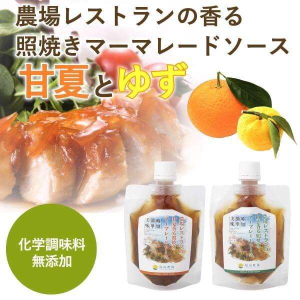 熊本 簡単料理たれ 甘夏ゆず マーマレード 照り焼き 調味料 150g 2袋セット