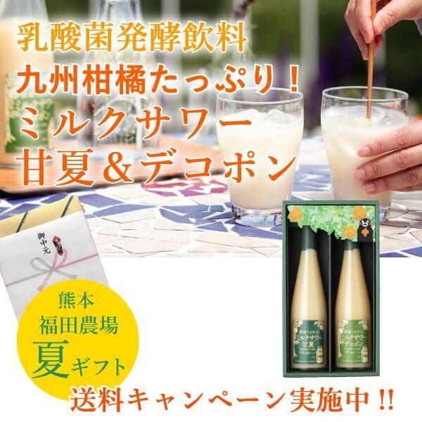 ギフト みかんジュース 乳酸菌飲料 ミルクサワー フルーツ 甘夏デコポン 500mlセット 5倍希釈 九州熊本
