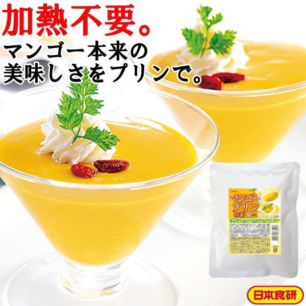 マンゴープリンの素RT 200g 日本食研 公式 業務用