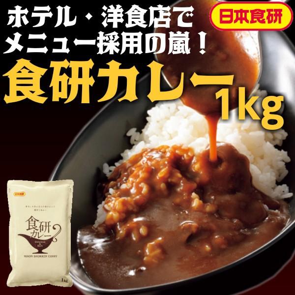 食研 カレー 1kg レトルトカレー 日本食研 公式 業務用