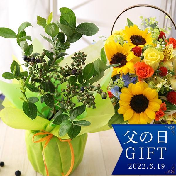 父の日 プレゼント ギフト 花 鉢植え 果樹鉢 アレンジメント 送料無料 レモン ブルーベリー ペピーノ ヒマワリ スタンディングブーケ