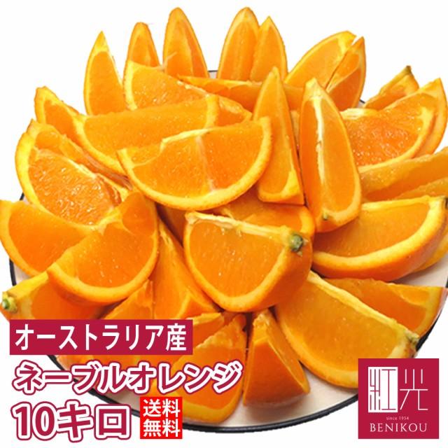 激甘 オレンジ 約10kg オーストラリア産 【送料無料】 「北海道・沖縄は+1100円」 果物 フルーツ ネーブル バレンシア 柑橘 ジュース