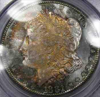 金貨 銀貨 硬貨 シルバー ゴールド アンティークコイン 1881-SモーガンシルバーダラージェムBU PCGS MS-64 ...見事な 美しいトーン Prett