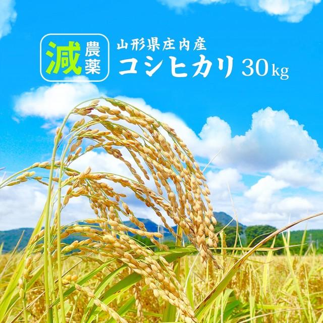 米 お米 減農薬 コシヒカリ 30kg 送料無料 (無洗米 白米 玄米) 精米後約27kg 令和元年 山形県産 30キロ ※一部地域は別途送料追加