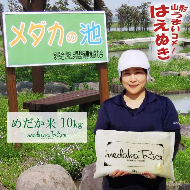 米 お米 めだか米 10kg (5kgx2袋) -メダカが泳ぐキレイな田んぼで育ったお米- 送料無料 (無洗米 白米 玄米) 令和2年 新米 山形県産 はえ