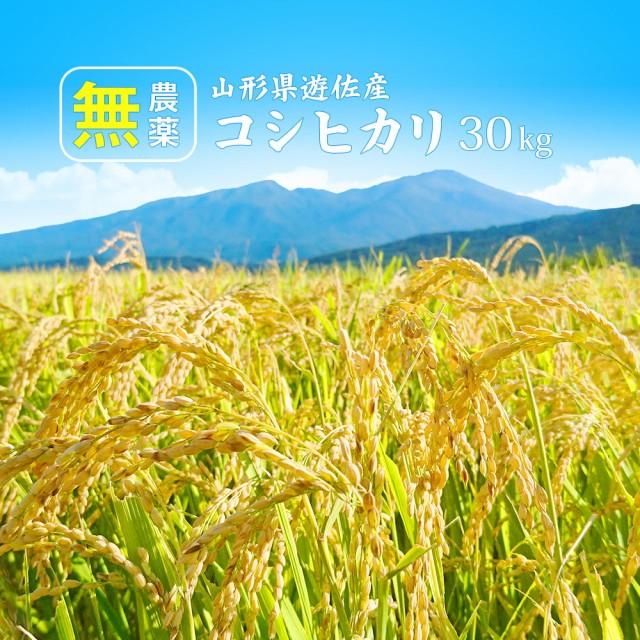 無農薬 コシヒカリ 30kg (精米後約27kg) 令和2年 新米 特別栽培米 (無洗米 白米 玄米) 送料無料 山形県産 30キロ 産地直送 ギフト ※一部
