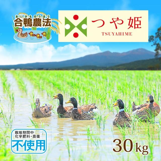 米 お米 合鴨農法 無農薬米 つや姫 30kg (精米後約27kg) 送料無料 (無洗米 白米 玄米) 令和元年 山形県産 30キロ 特別栽培米 ※一部地域