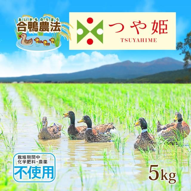 米 お米 合鴨農法 無農薬米 つや姫 5kg 送料無料 (無洗米 白米 玄米) 令和2年 山形県産 5キロ 特別栽培米 ※一部地域は別途送料追加