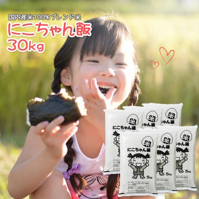 米 お米 30kg (5kg×6) 送料無料 (地域限定) にこちゃん飯 安い 30キロ 山形県産 白米