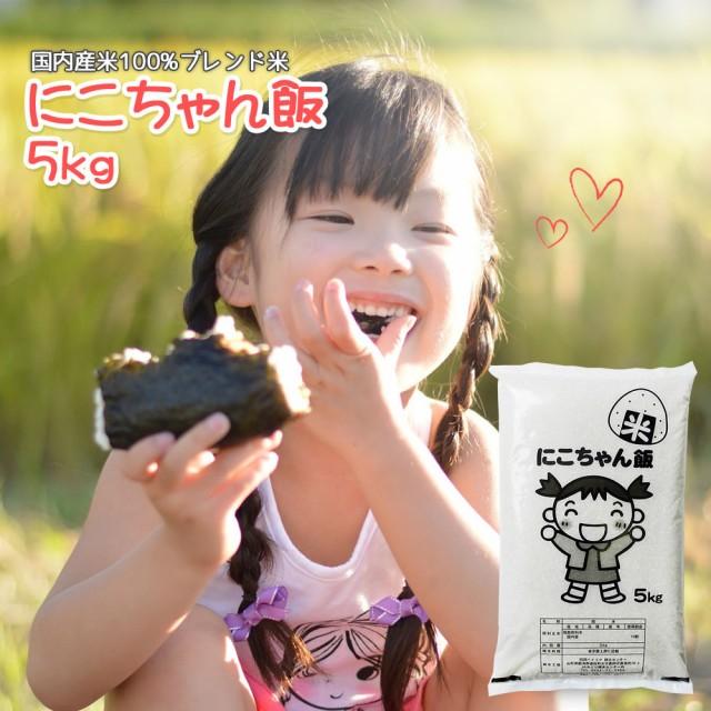 米 お米 5kg 送料無料 (地域限定) にこちゃん飯 安い 5キロ 国内産100% 白米