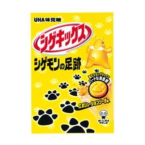 味覚糖 シゲキックス シゲモンの足跡 エボリューションソーダ (10×4)40入 (本州一部送料無料)
