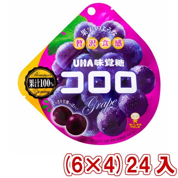 味覚糖 コロロ グレープ (6×4)24入 (Y80) (本州一部送料無料)