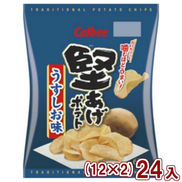 カルビー 堅あげポテト うすしお味  (12×2)24入 (Y12) (本州一部送料無料)