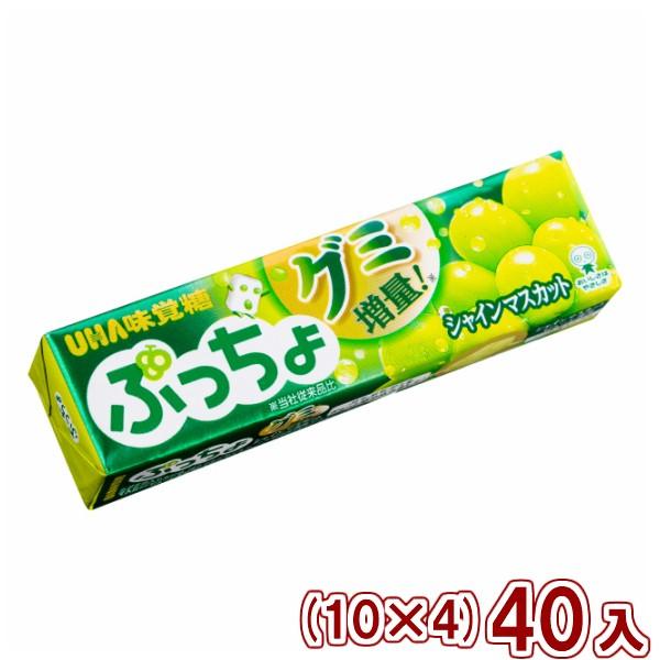味覚糖 ぷっちょスティック シャインマスカット (10×4)40入 (Y60) (本州一部送料無料)