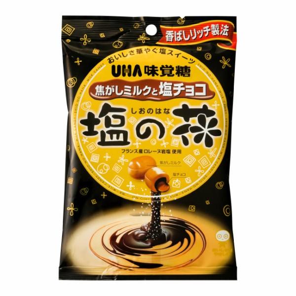 味覚糖 塩の花 焦がしミルクと塩チョコ (6×2)12入 (本州一部送料無料)
