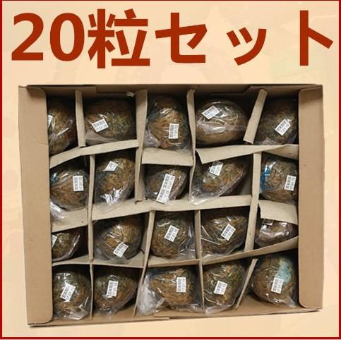 【20個セット】チンタオピータン 青島皮蛋 硬芯タイプ ケース販売 お買い得 65g×20