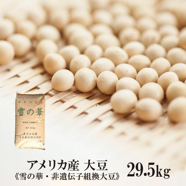 アメリカ産大豆 雪の華 29.5kg/約30kg 宅配便 大豆 インディアナ産 白目大豆 バラエティー大豆 雪の華 非遺伝子組換 乾燥豆 こわけや