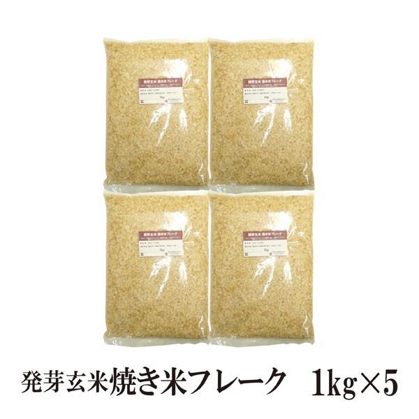 発芽玄米焼き米フレーク 1kg×5〔チャック付〕 宅配便 送料無料 チャック付 国産 大分県産 発芽玄米 減農薬米 食物繊維 こわけや