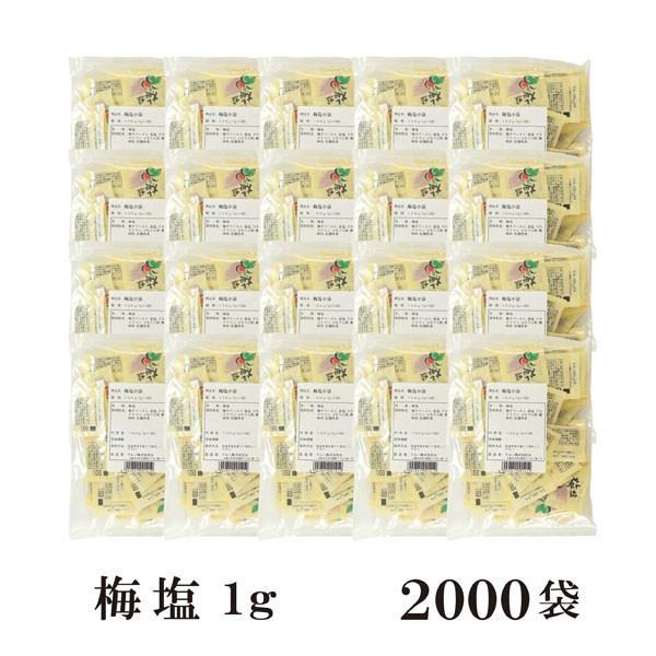 梅塩 1g×2000袋 宅配便 送料無料 小袋 使いきり 調味料 塩 ソルト 梅 梅干し 天ぷら 寿司 焼き鳥 お弁当 イベント 和食 肉料理 野菜料