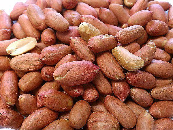 職人が手むきした 渋皮付き 煎りピーナッツ 500g チャック袋 九州工場製造品 黒田屋