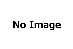 モクバ /小山刃物 D-103-1 EXレースウェイカッター 替え刃(バネ、バネ受け付) D1ダクトチャンネル DP1レースウェイ用