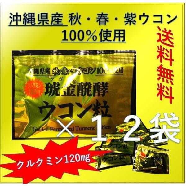 ポイント消化 送料無料 700 ウコン クガニ発酵 琥珀発酵 1袋(5粒)×12袋セット お試し バラ売り