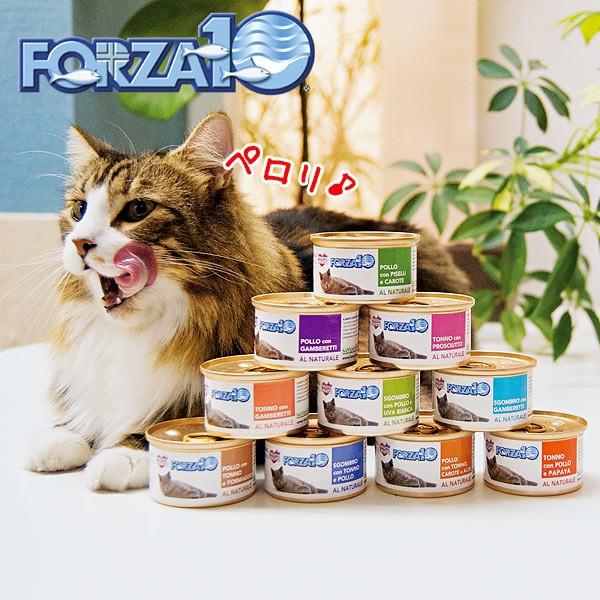 フォルツァ10 ナチュラルグルメ缶 マグロとプロシュート ウェットフード トッピング 猫