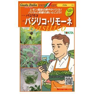 バジルの種 バジリコ・リモーネ 小袋