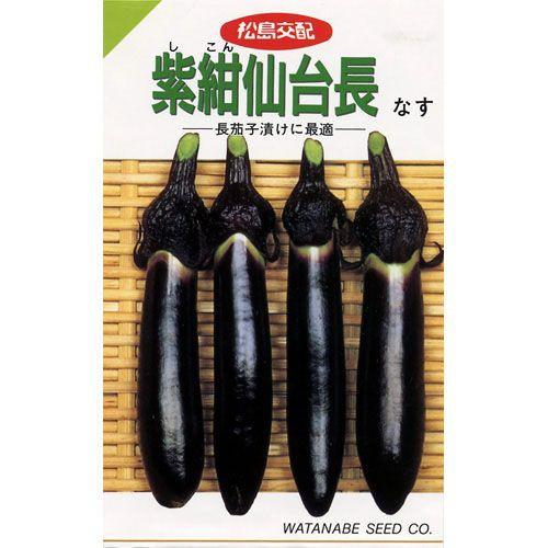 茄子の種 紫紺仙台長なす 0.6ml