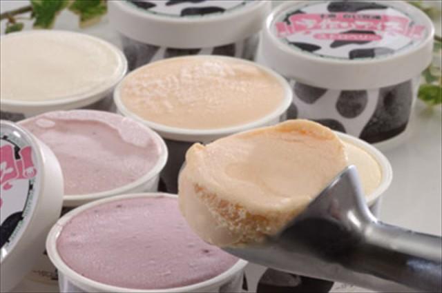 スイーツ お菓子 アイス アイスクリーム ギフト セット 詰め合わせ 贈り物 贈答 産直 北海道十勝白い牧場アイス 内祝い 御祝 お祝い お礼
