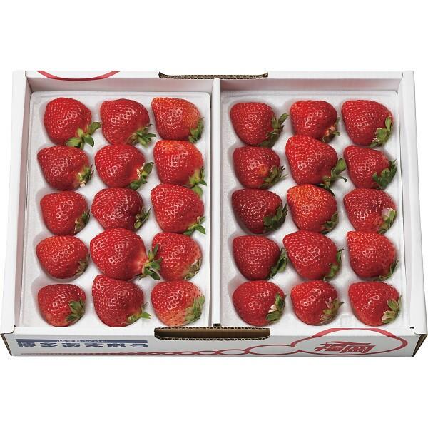 お歳暮 冬 ギフト お祝い 贈り物 御歳暮 果物 フルーツ いちご 苺 イチゴ 福岡県産 あまおう いちご 720g