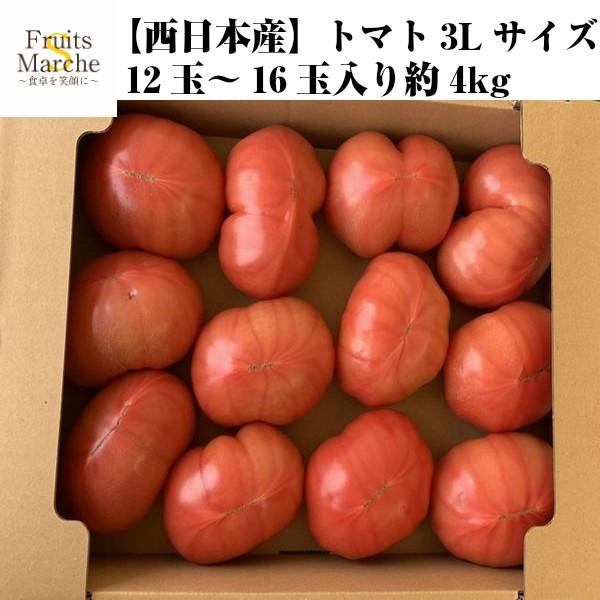 【送料無料】【西日本産】トマト 3Lサイズ 12玉〜16玉入り 約4kg(北海道沖縄別途送料加算)絶品/とまと/訳有/訳あり/訳アリ/ワケあり