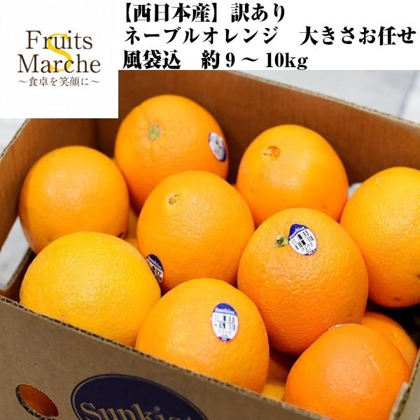 【送料無料】【西日本産】訳あり ネーブルオレンジ 大きさおまかせ 風袋込 約9〜10kg(北海道沖縄別途送料加算)木成り完熟/訳有/訳あ