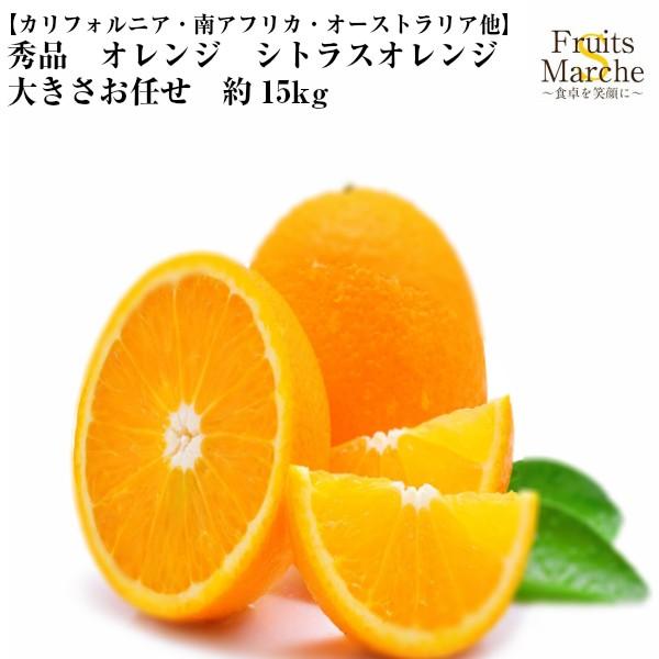 【送料無料】【カリフォルニア・南アフリカ・オーストラリア他】秀品 オレンジ シトラスオレンジ 大きさお任せ 約15kg(北海道沖縄別
