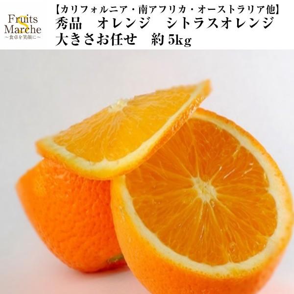 【送料無料】【カリフォルニア・南アフリカ・オーストラリア他】秀品 オレンジ シトラスオレンジ 大きさお任せ 約5kg(北海道沖縄別途