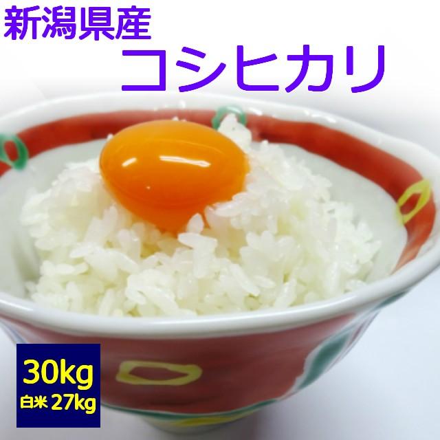 【送料無料】【玄米】【白米】【令和2年産】新潟県産 コシヒカリ 30kg お取り寄せ 30キロ お米