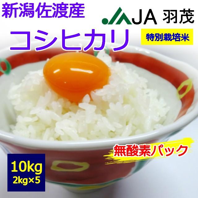 【特別栽培米】【令和2年産】【新鮮こだわり】【送料無料】【白米】 佐渡産 コシヒカリ 2kg×5個 10kg  お取り寄せ 10キロ