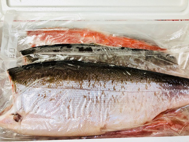 天然 紅鮭 ・甘塩鮭【業務用・8kg 入り】お弁当・おにぎり・お茶漬け・ムニエルなどでお使いいただけます【冷凍便】