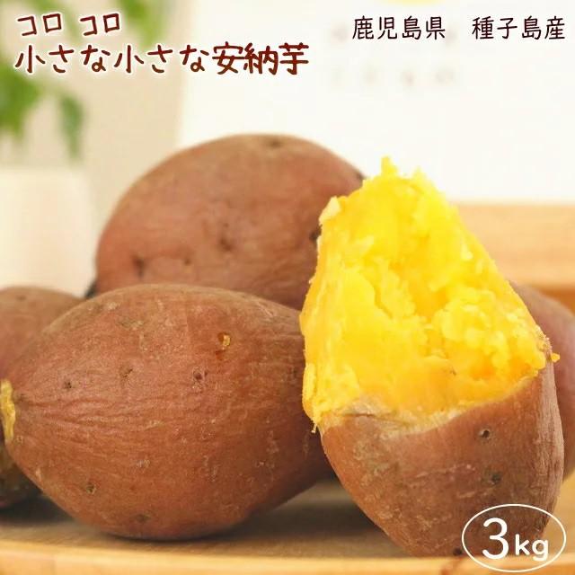 【予約・10月下旬発送】小さな安納芋3kg 送料無料 訳あり ご家庭用 さつまいも 3kg箱 鹿児島県 種子島産 2000円ポッキリ