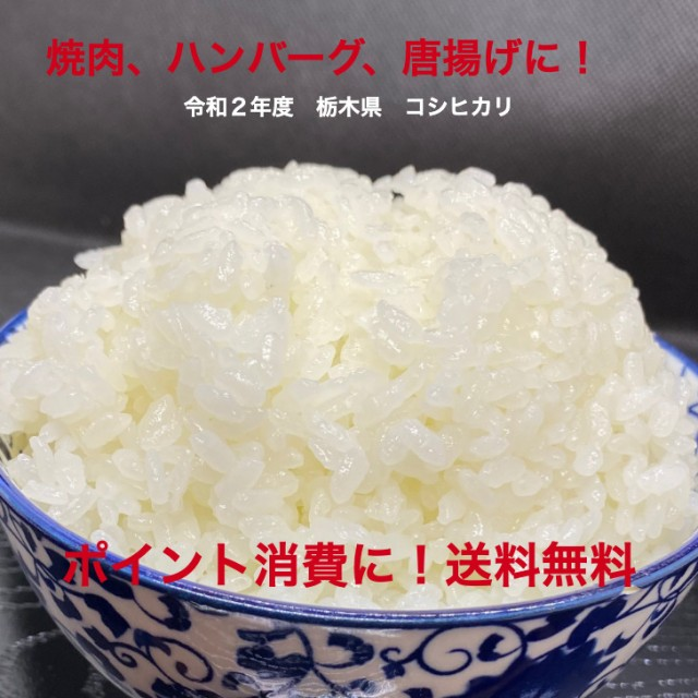 栃木県産コシヒカリ 令和2年度 1キロ 送料込み