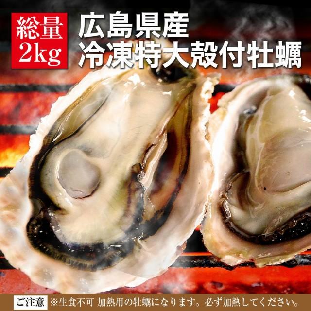 送料無料 殻付き 冷凍 牡蠣 広島県産 特大LLサイズ 2kg 約15〜17個入 2〜3人前 海鮮 キャンプ バーベキュー BBQ カンカン焼き 追加用とし