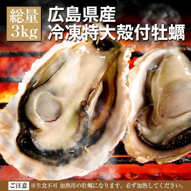 送料無料 殻付き 冷凍 牡蠣 広島県産 特大LLサイズ 3kg 約20〜23個入 4〜5人前 キャンプ 海鮮 バーベキュー BBQ カンカン焼き 追加用とし