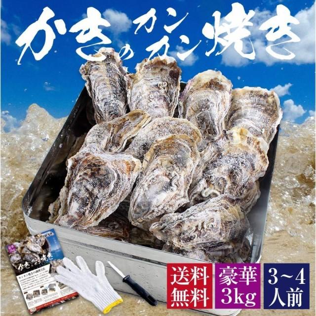 牡蠣 殻付き カキ カンカン焼き 海鮮 バーベキュー セット 広島県産 約3kg 大粒 LLサイズ 20~23個入 冷凍 貝類 一斗缶 軍手 ナイフ かん
