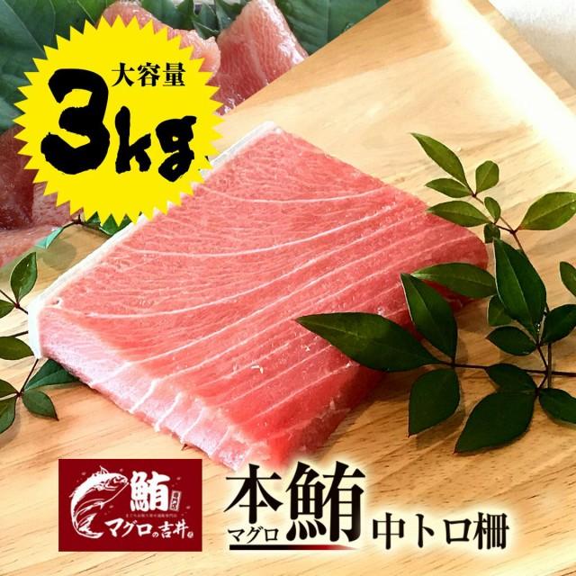 ギフト 本マグロ 中トロ ブロック 業務用 大容量 3kg 極上の旨味が味わえます! 解凍レシピ付 プレゼント 海鮮 ギフト まぐろ マグロ 鮪