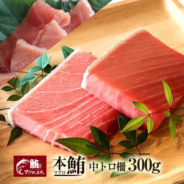 ギフト まぐろ 中トロ ブロック 300g 刺身 極上 の旨味が味わえます! 解凍レシピ付 プレゼント マグロ 鮪 海鮮丼 寿司 御祝 内祝 誕生日
