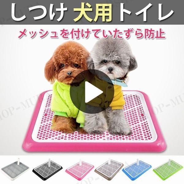 しつけ 犬用トイレ ペット トイレ トレーニングトイレ 小型犬 室内犬 犬用 イヌ ペット用品 しつけ用ステップトレー トイレ用品