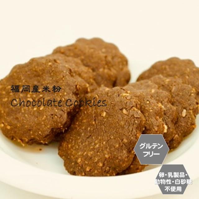 米粉チョコクッキー グルテンフリー ビーガン 米粉100% チョコ クッキー 小麦粉 卵 乳製品 動物性油 不使用 アレルギー対応 ダイエット